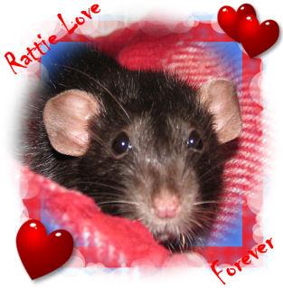 Revlon in Love
