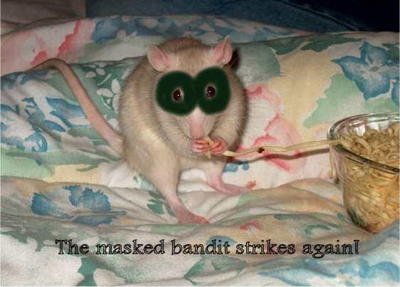Charlie, the bandit